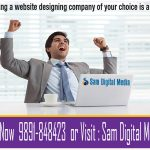 website designing company in Dwarka